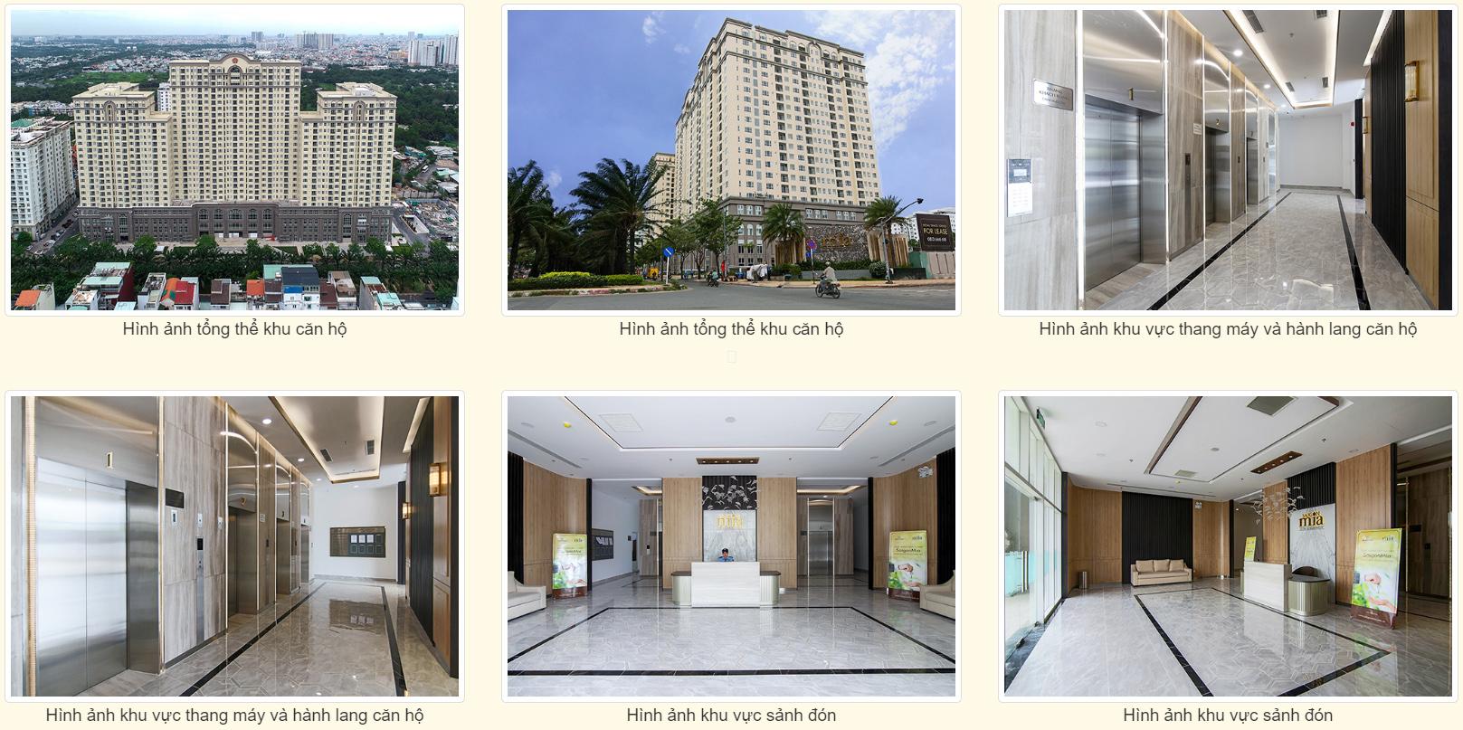 Bảng giá cho thuê căn hộ chung cư Saigon Mia