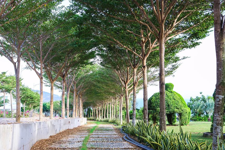 Ý tưởng phát triển Khu dự án Sunny Villa Bình Thuận có gì khác?