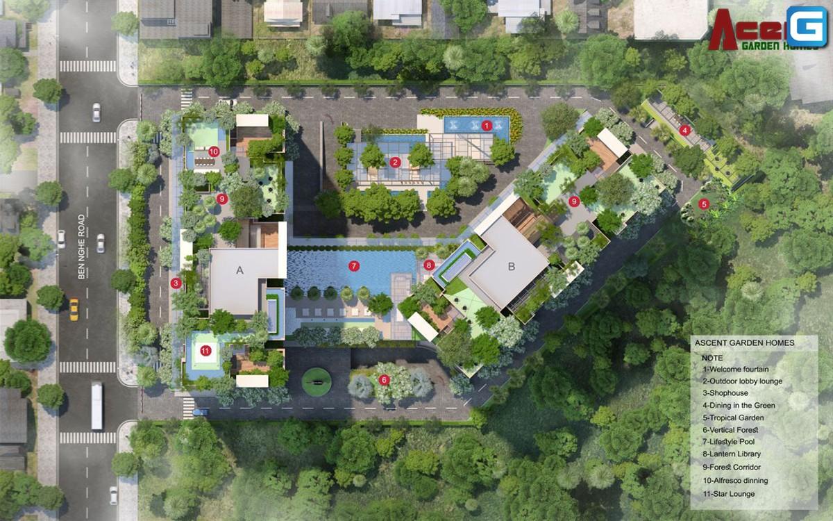 Ascent Garden Homes